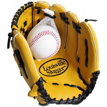 Adult Baseball Glove and Ball Set