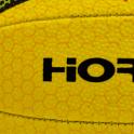 Hornet Netball